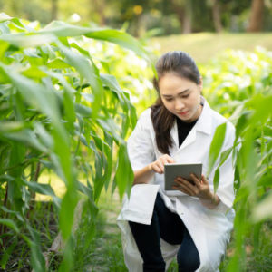 Biotechnology woman engineer examining and record data plant leaf for disease, science and research concept